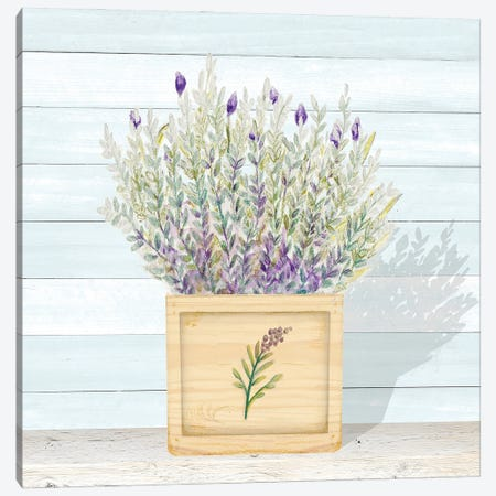 Lavender and Wood Square III Canvas Print #GYN49} by Janice Gaynor Canvas Art