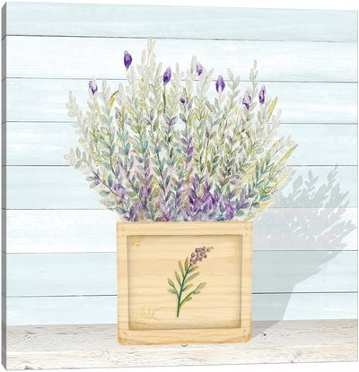 Lavender and Wood Square III Canvas Art Print