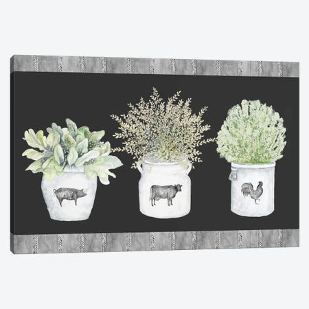 Potted Farm Arrangement Trio on Chalkboard Canvas Print #GYN51} by Janice Gaynor Canvas Art Print