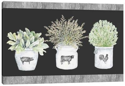 Potted Farm Arrangement Trio on Chalkboard Canvas Art Print