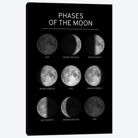 Phases of the Moon Chart - Black Canvas Print #GYO147} by GetYourNerdOn Canvas Wall Art