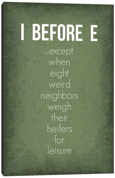 Funny I Before E Exceptions Canvas Art Print