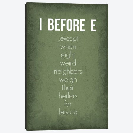 Funny I Before E Exceptions Canvas Print #GYO168} by GetYourNerdOn Art Print