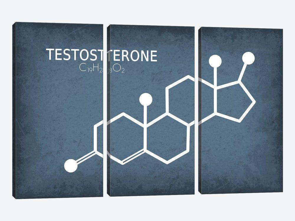 Testosterone Molecule by GetYourNerdOn 3-piece Canvas Art