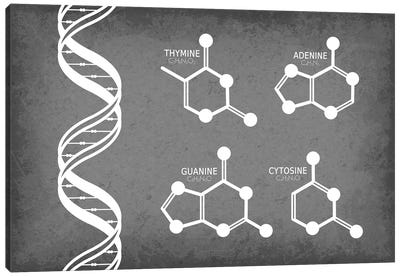 DNA Strand with Nucleotide Molecules Canvas Art Print
