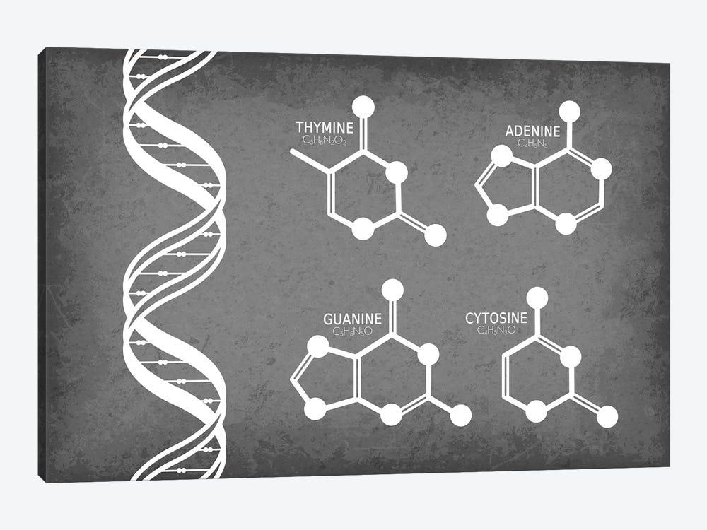 DNA Strand with Nucleotide Molecules by GetYourNerdOn 1-piece Canvas Artwork
