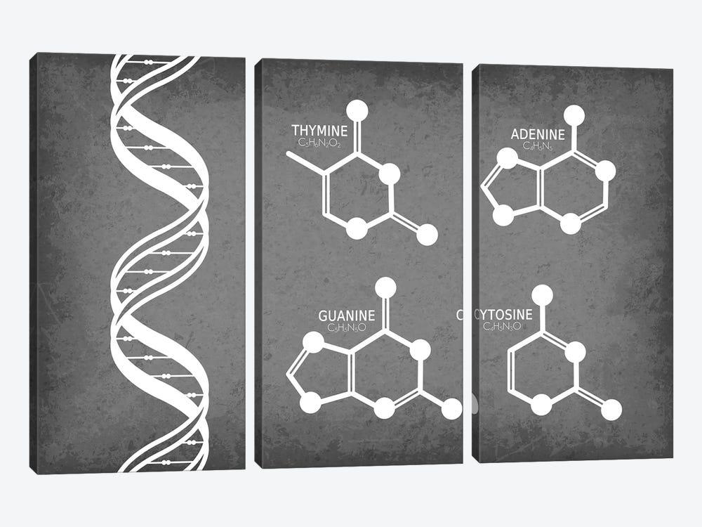 DNA Strand with Nucleotide Molecules by GetYourNerdOn 3-piece Canvas Art
