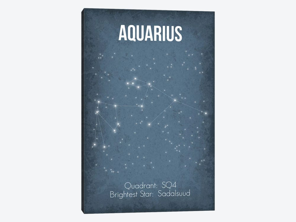 Aquarius by GetYourNerdOn 1-piece Canvas Art Print