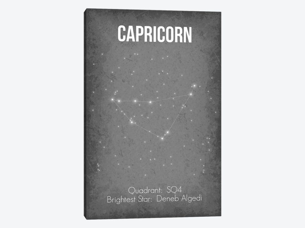 Capricorn by GetYourNerdOn 1-piece Canvas Art