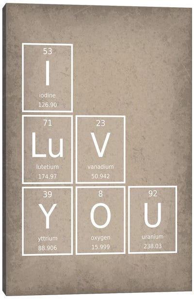 I Luv You Canvas Art Print