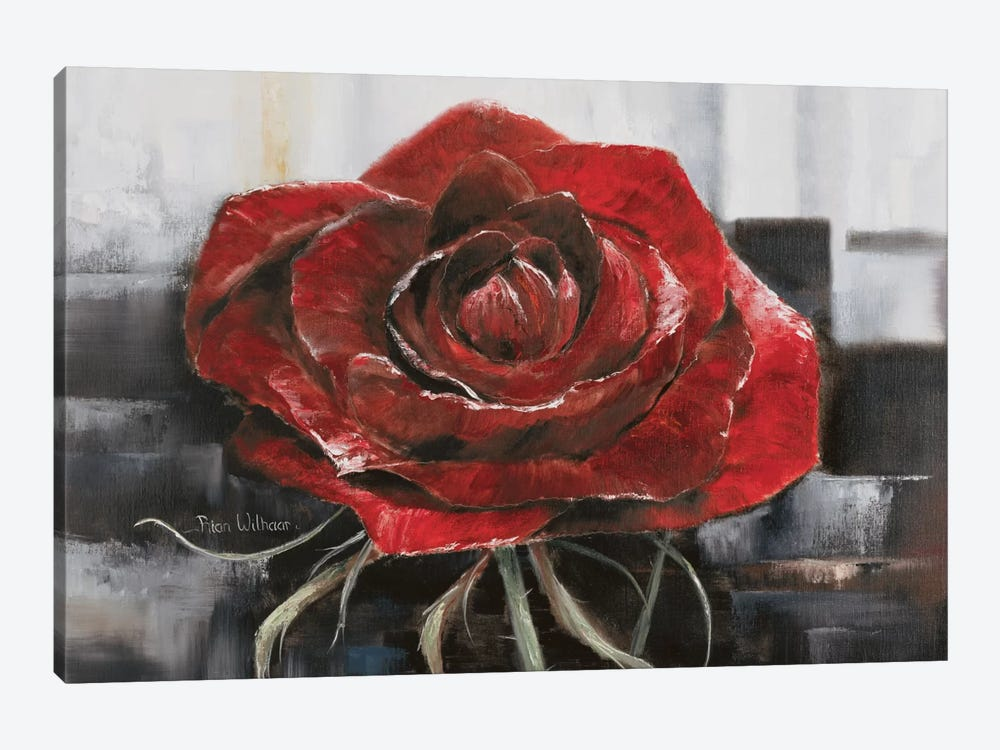 Blooming Red Rose by Rian Withaar 1-piece Canvas Art