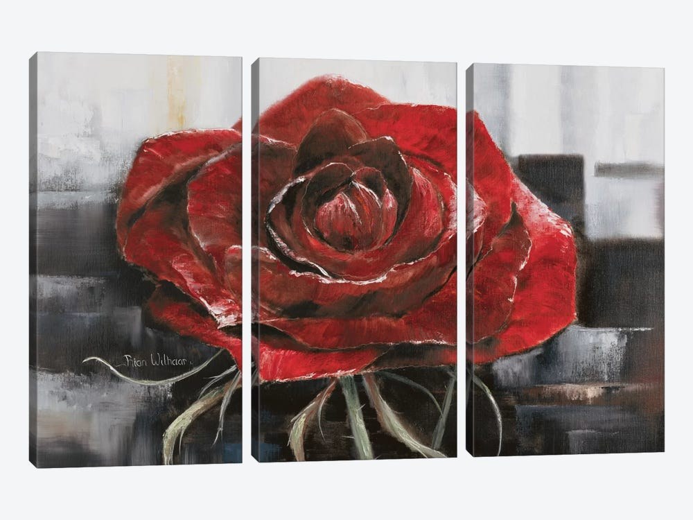 Blooming Red Rose by Rian Withaar 3-piece Canvas Art