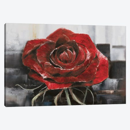 Blooming Red Rose Canvas Print #HAA4} by Rian Withaar Canvas Art Print