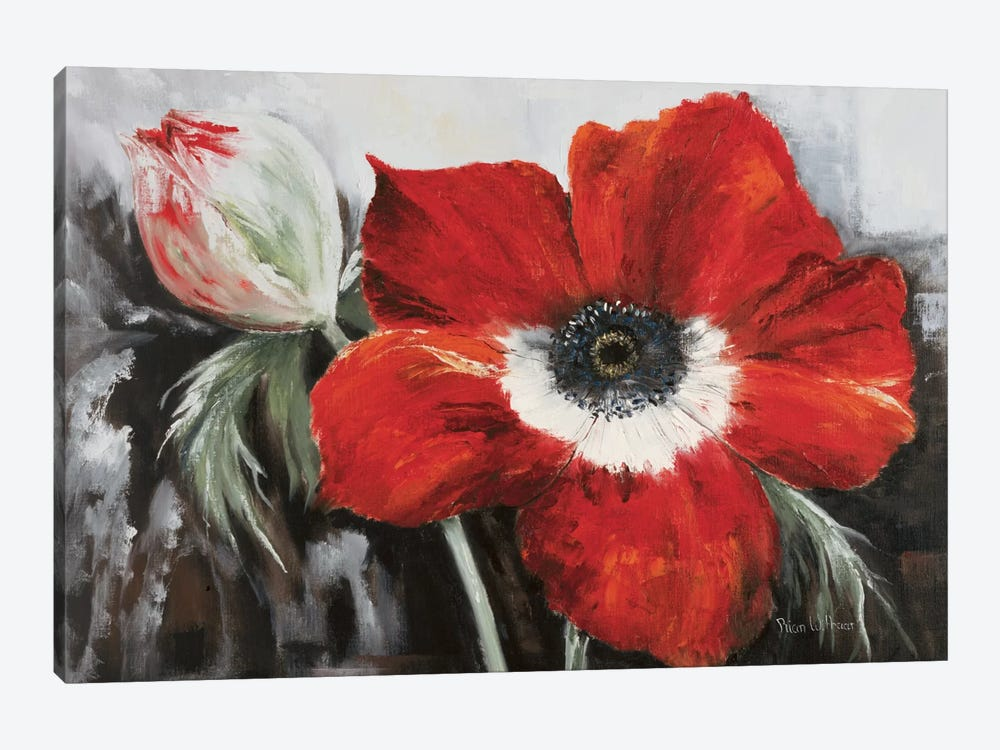 Poppy In Full Bloom by Rian Withaar 1-piece Canvas Print