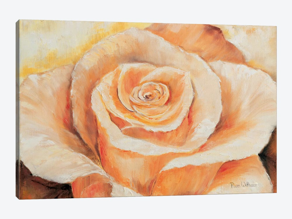 Rose In Detail by Rian Withaar 1-piece Canvas Art