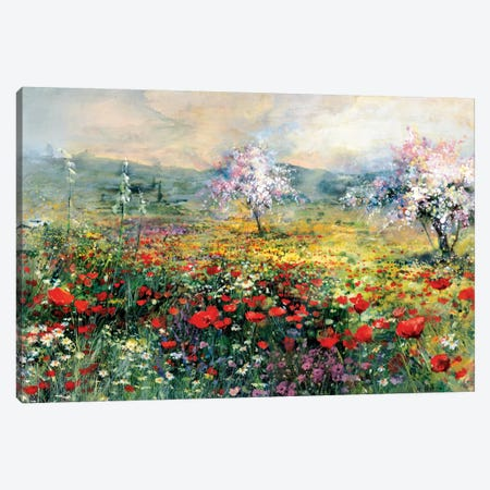 Between The Poppies Canvas Print #HAE101} by Willem Haenraets Art Print