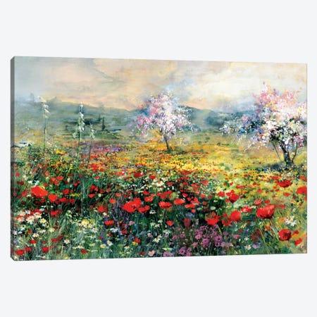 Between The Poppies Canvas Print #HAE101} by Willem Haenraets Art Print