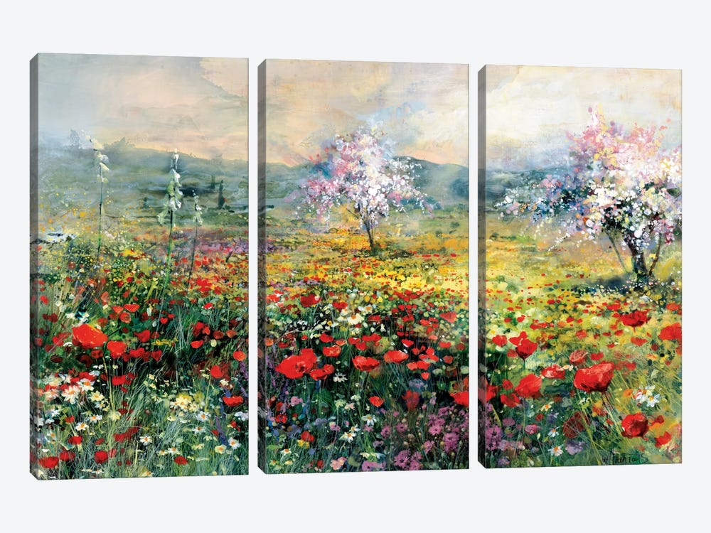 Between The Poppies by Willem Haenraets 3-piece Art Print