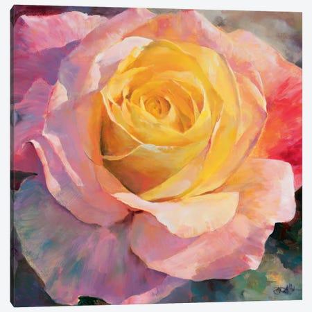 Flower I 3-Piece Canvas #HAE135} by Willem Haenraets Canvas Print