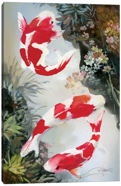 Koi III Canvas Art Print