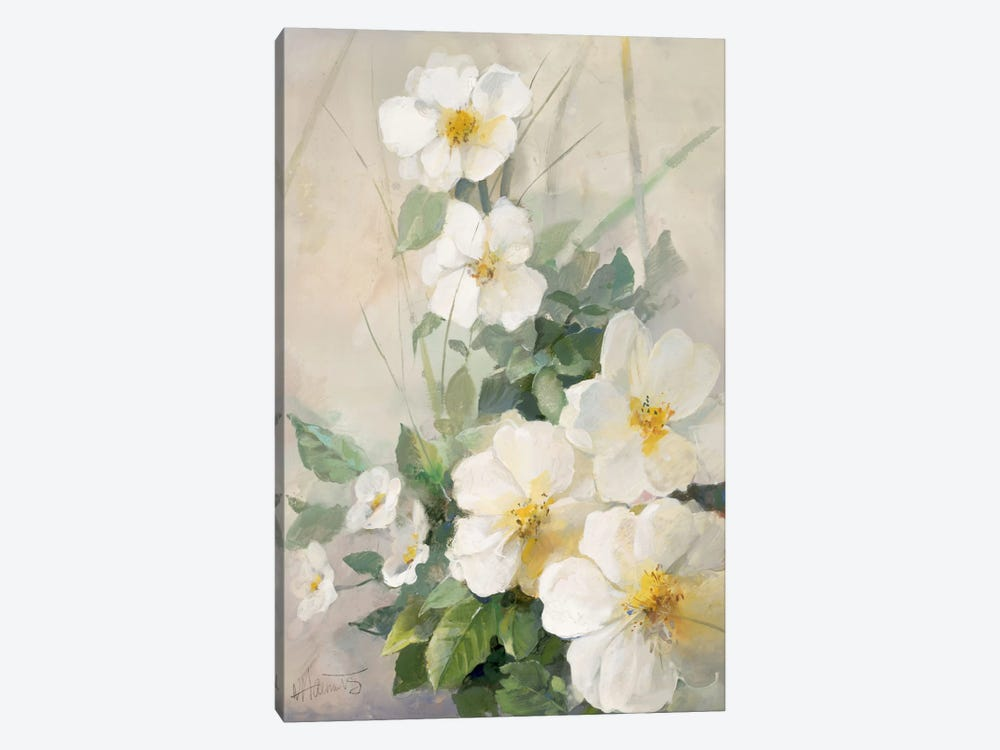 Lovely Anemones by Willem Haenraets 1-piece Canvas Artwork