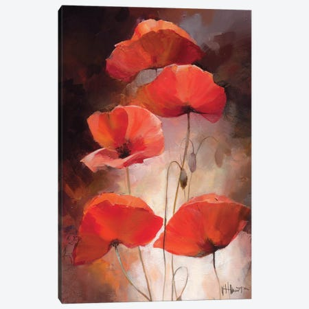 Poppy Bouquet II Canvas Print #HAE203} by Willem Haenraets Canvas Artwork