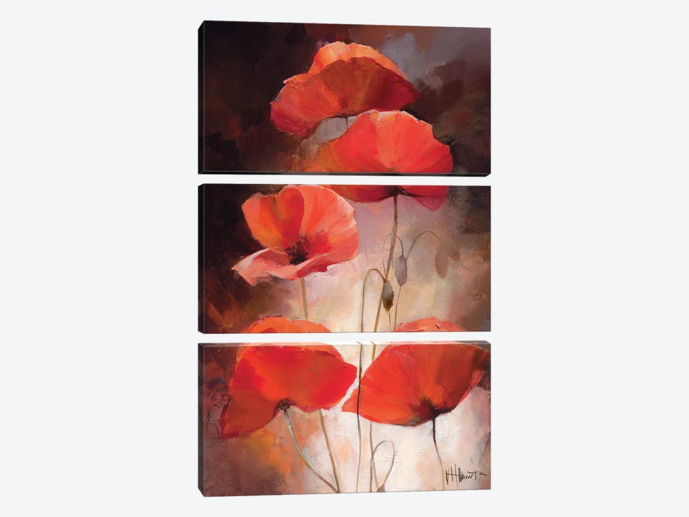 Poppy Bouquet II by Willem Haenraets 3-piece Art Print