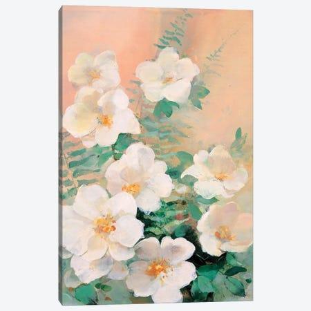 Shiny I Canvas Print #HAE231} by Willem Haenraets Canvas Art Print
