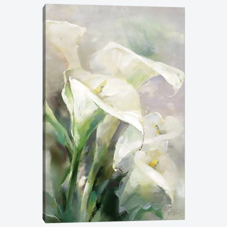 Shiny IV Canvas Print #HAE234} by Willem Haenraets Canvas Art
