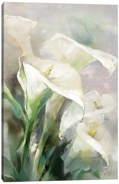 Shiny IV Canvas Art Print