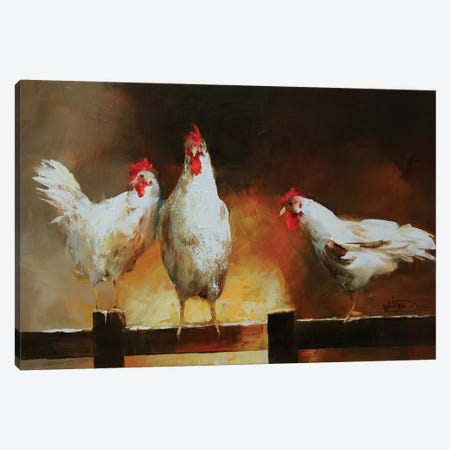 Chicken II Canvas Print #HAE24} by Willem Haenraets Canvas Print