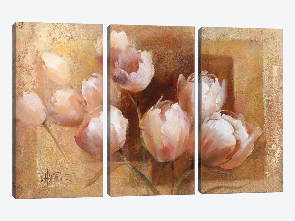 Willem's Tulips For You by Willem Haenraets 3-piece Canvas Art