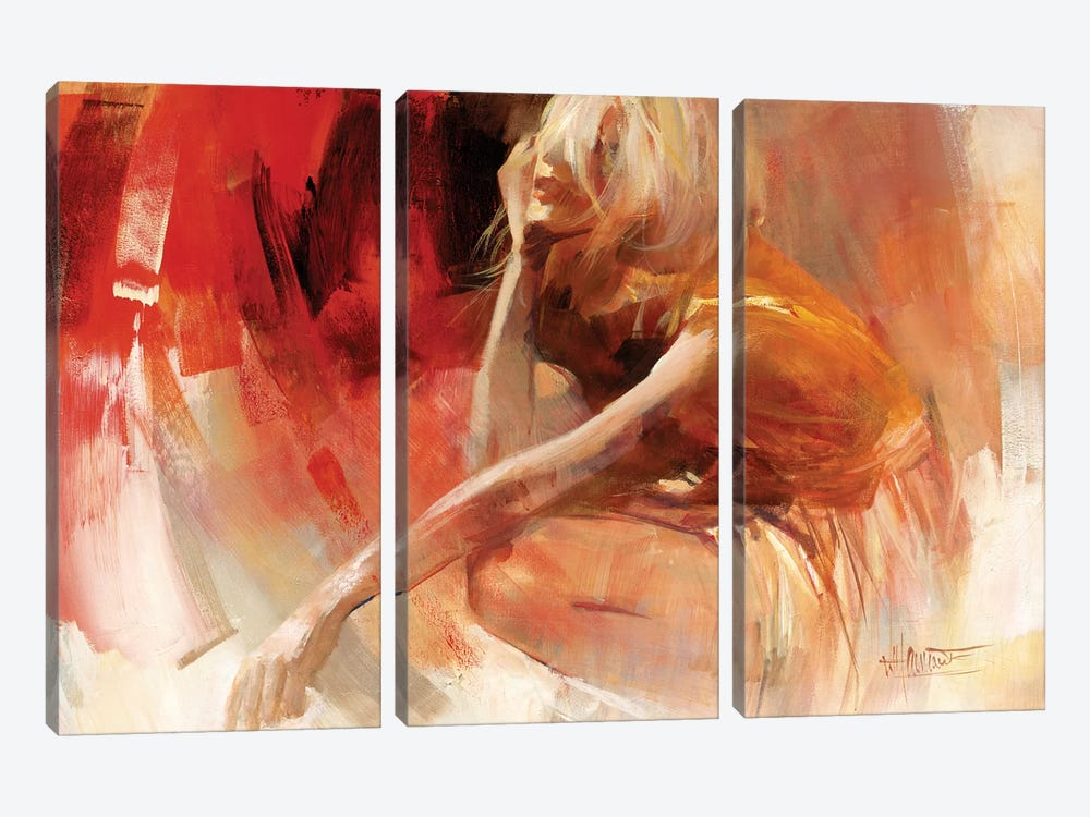 Playful III by Willem Haenraets 3-piece Canvas Artwork