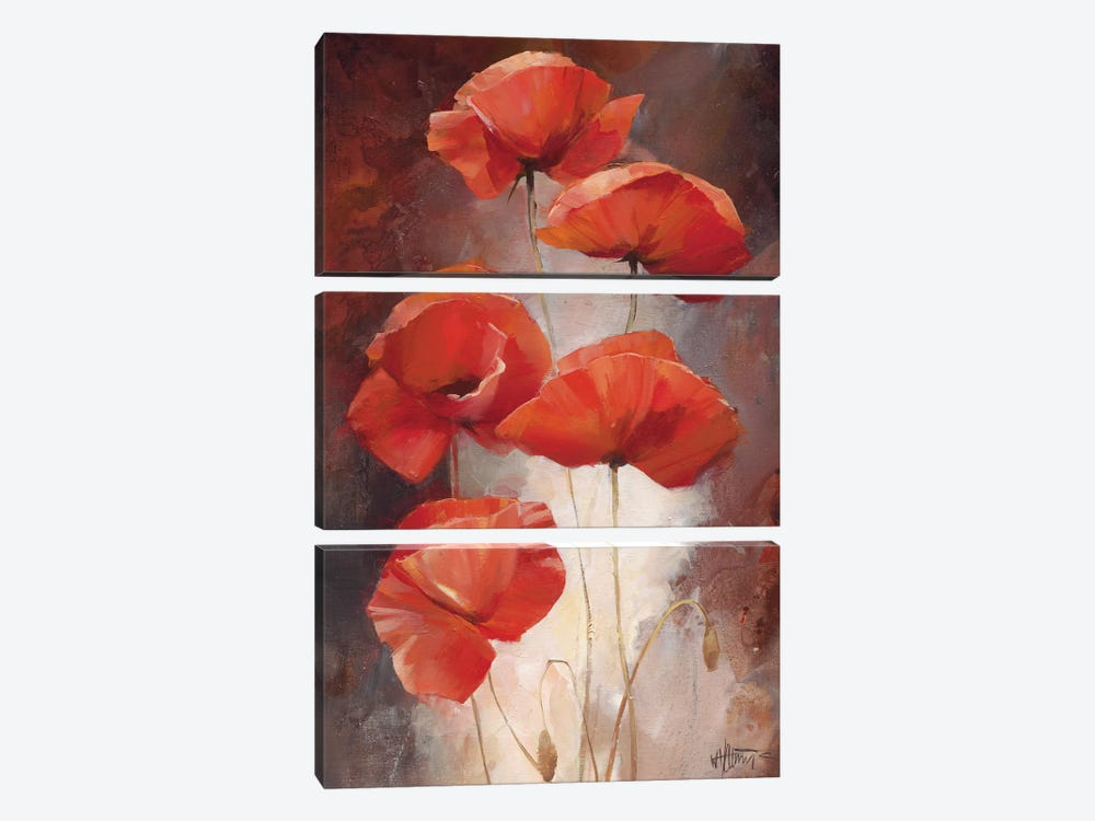 Poppy Bouquet I by Willem Haenraets 3-piece Canvas Print