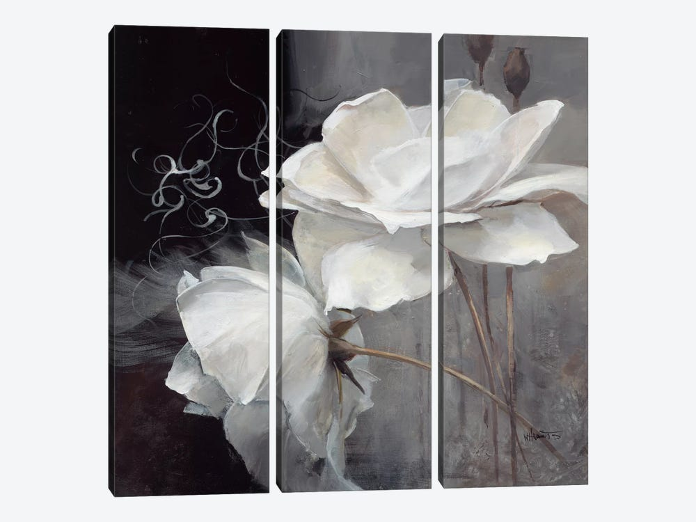 Wealth Of Flowers II by Willem Haenraets 3-piece Canvas Artwork