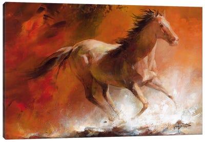Wild Horses I Canvas Art Print