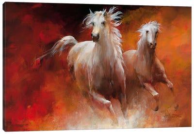 Wild Horses II Canvas Art Print