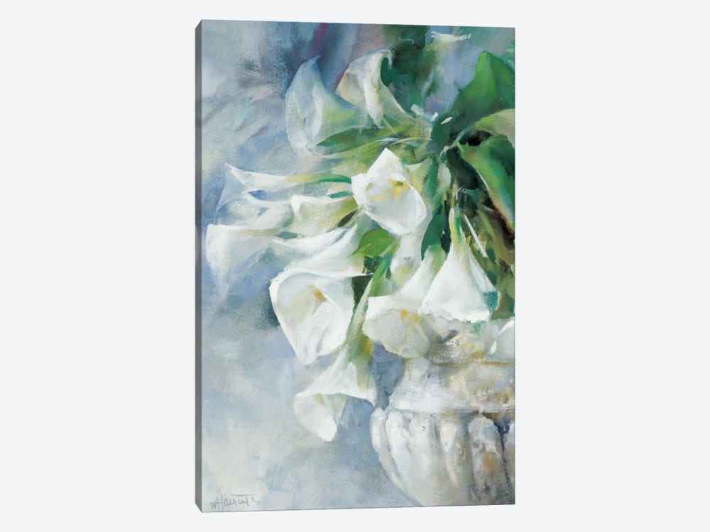 A Memory Captured by Willem Haenraets 1-piece Canvas Art Print