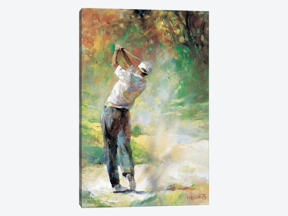 A Perfect Day by Willem Haenraets 1-piece Canvas Artwork
