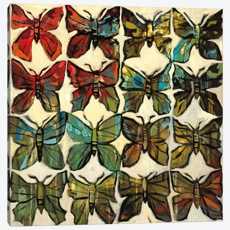 Butterflies Canvas Print #HAR1} by Jennifer Harwood Canvas Wall Art