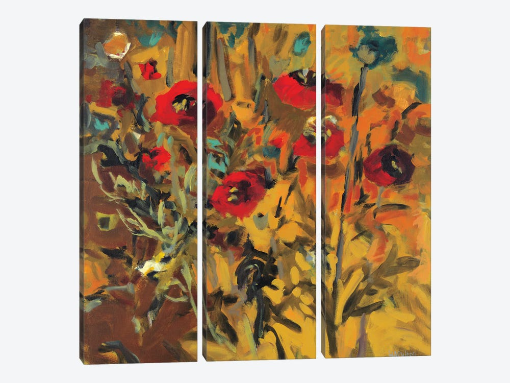 Wild Poppies by Jennifer Harwood 3-piece Canvas Artwork
