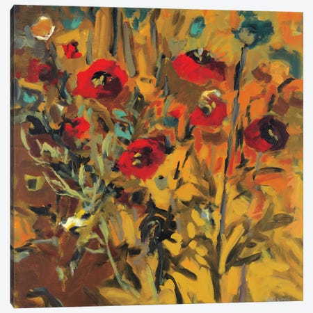 Wild Poppies Canvas Print #HAR5} by Jennifer Harwood Art Print