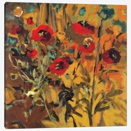 Wild Poppies Canvas Print #HAR5} by Jennifer Harwood Art Print