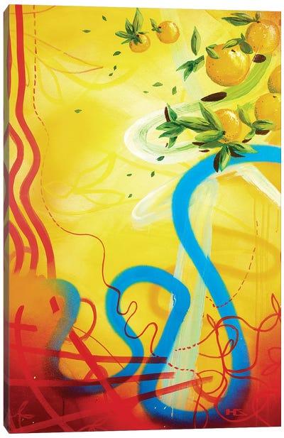 Costa del Sol Canvas Art Print