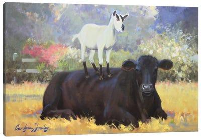 Farm Pals V Canvas Art Print