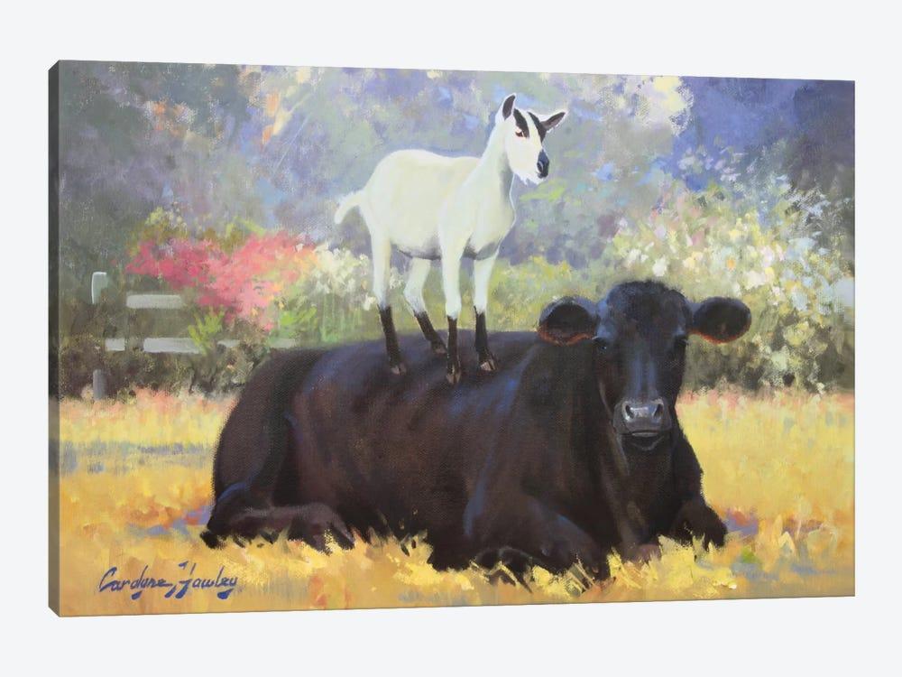 Farm Pals V by Carolyne Hawley 1-piece Canvas Wall Art
