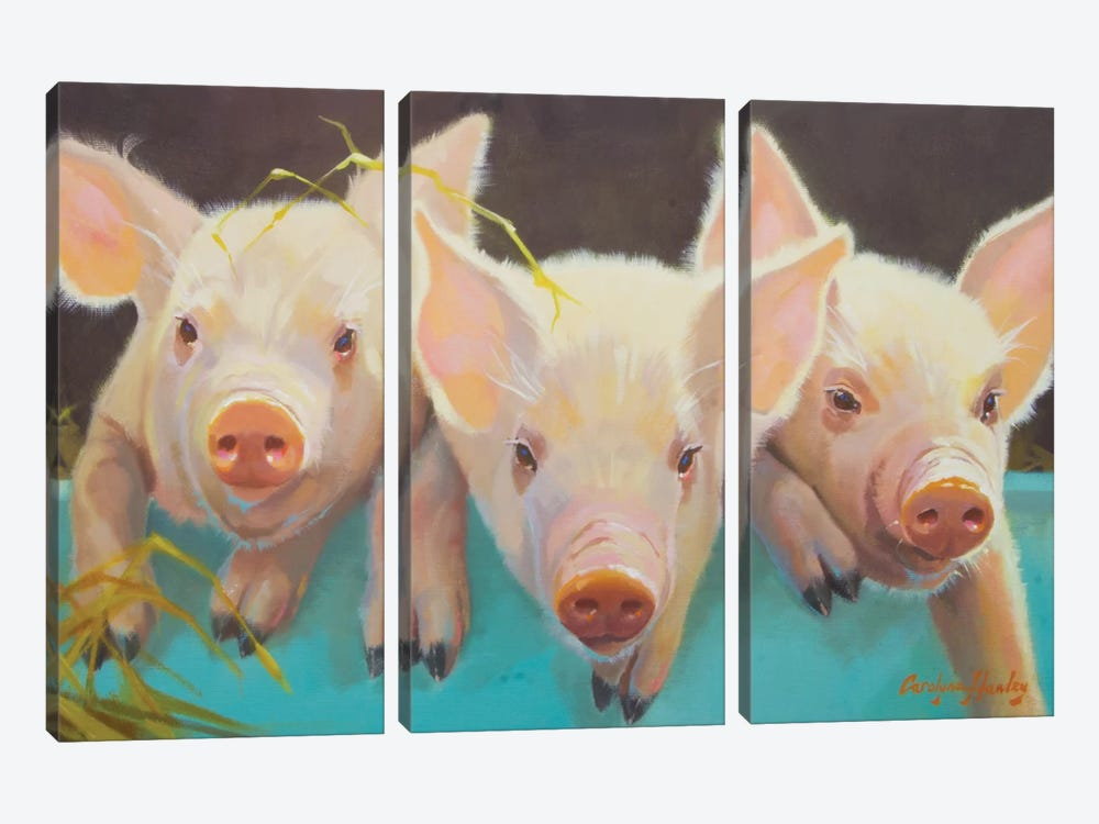 Life As A Pig I by Carolyne Hawley 3-piece Canvas Art Print
