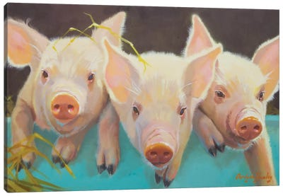 Life As A Pig I Canvas Art Print
