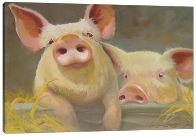 Life As A Pig II Canvas Art Print