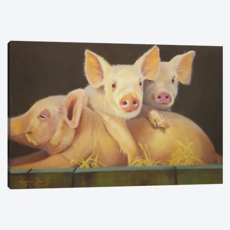 Life As A Pig III Canvas Print #HAW14} by Carolyne Hawley Canvas Art